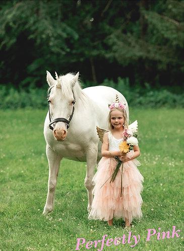 Fairytale Princess Dress (Long or short sleeve)