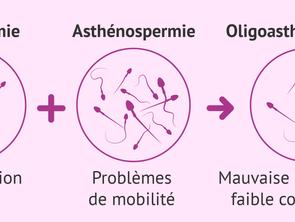 Oligoasthénospermie traitement naturel