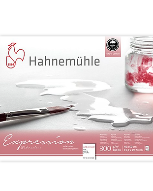 Hahnemühle_expression.png
