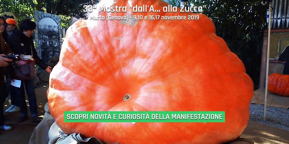 """""""33ª Edizione Mostra della Zucca"""""""