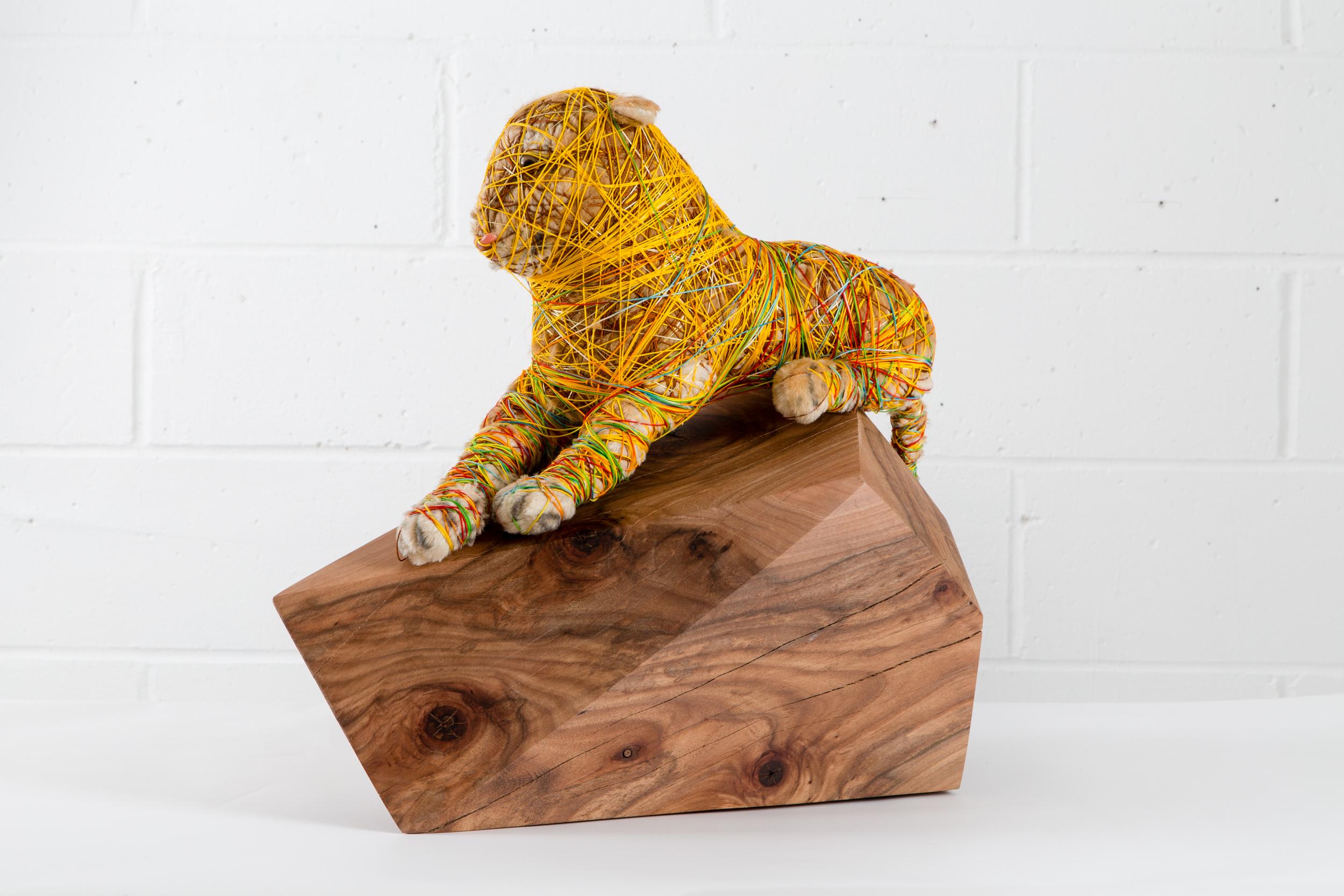 Tigon 48.5x31x52cm 2016