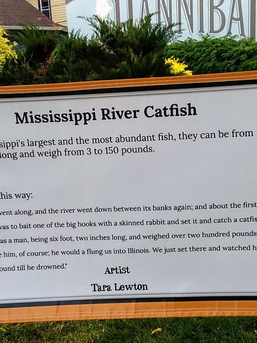 Mississippi River Catfish
