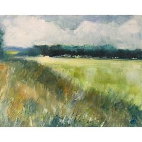 Zeals field