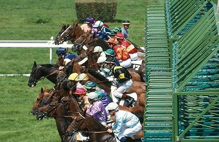 Photo_départ_course.jpg