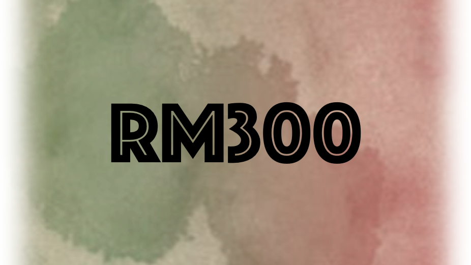 Support RM300
