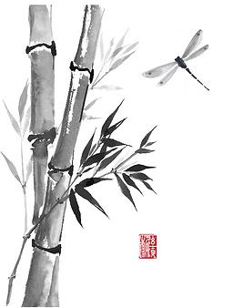 Zen-Shiatsu.me_Dragonfly.png