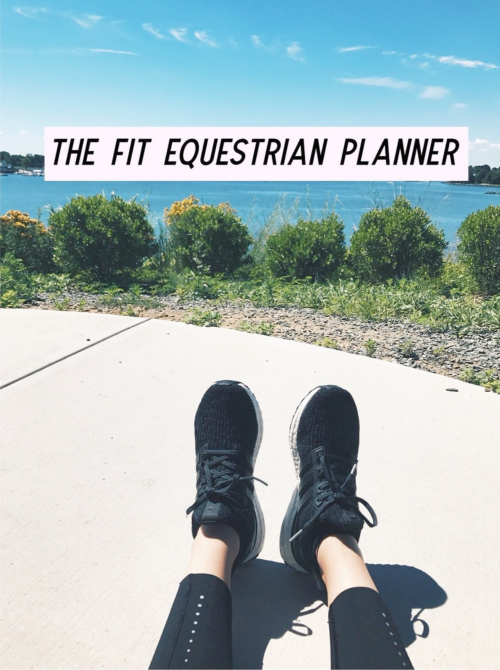 The Fit Equestrian and Life Equestrian