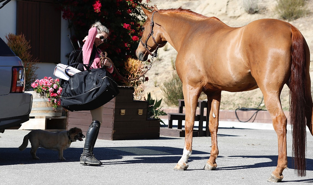 Maelort Pierson Duffle and Life Equestrian