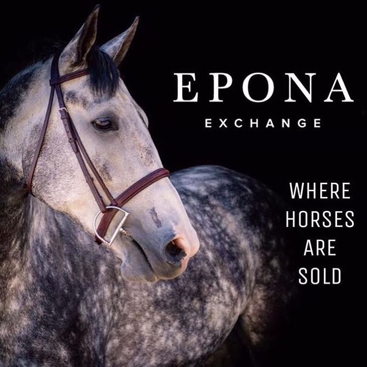 Epona Exchange and Life Equestrian