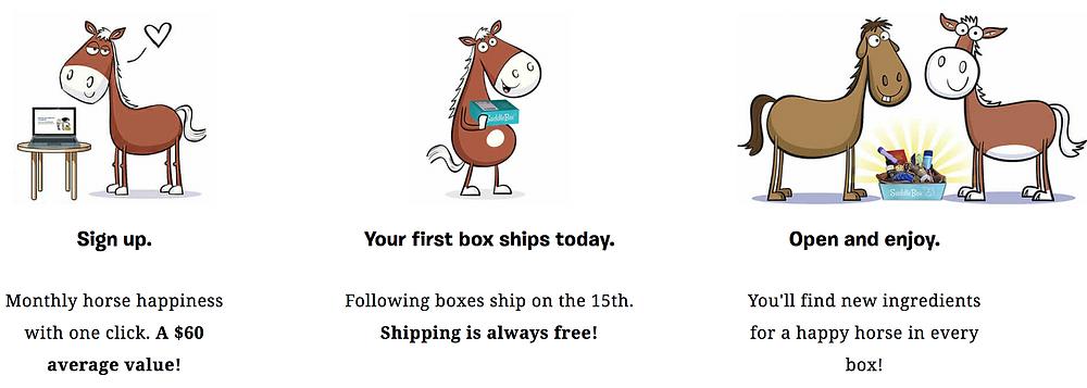 Saddle Box and Life Equestrian