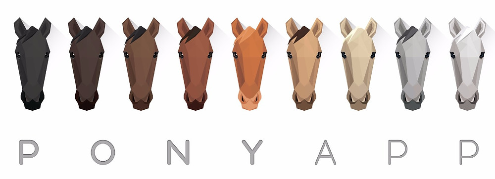 The PonyApp and Life Equestrian