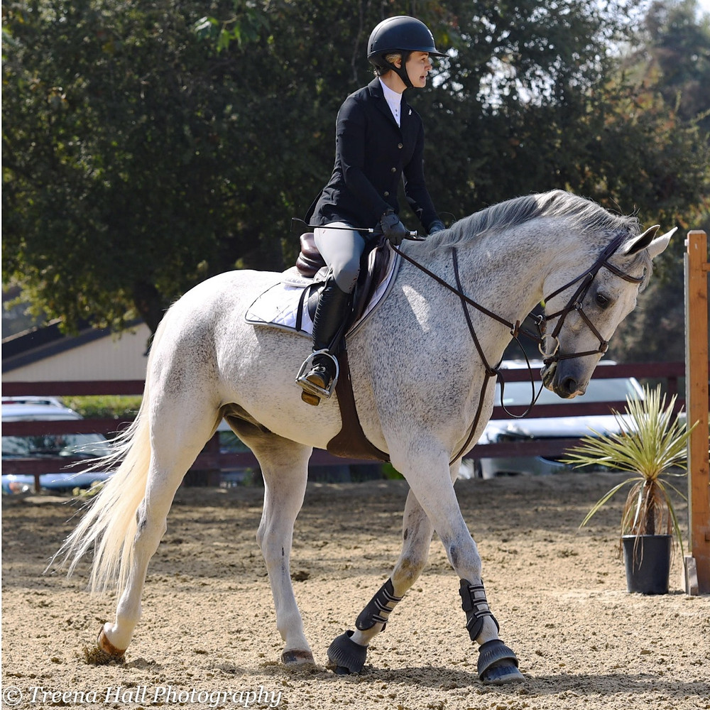 Two Bits Equestrian Founder Annie Heise For Life Equestrian