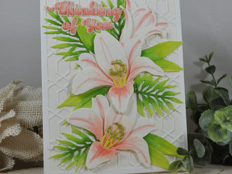 Ivory and Salmon Colored Easter Lily