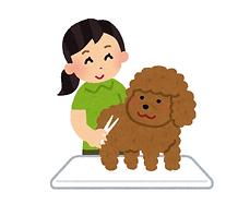 pet_triming_grooming.png