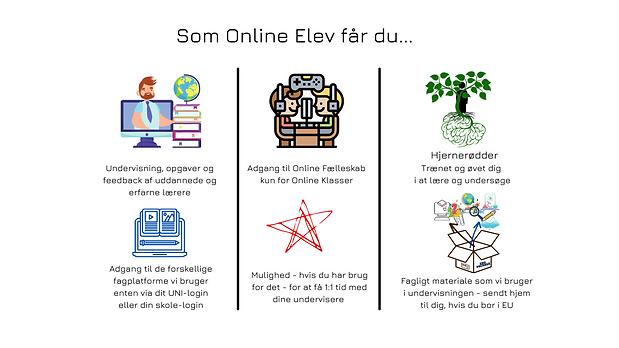 Som Online Elev får du ....png