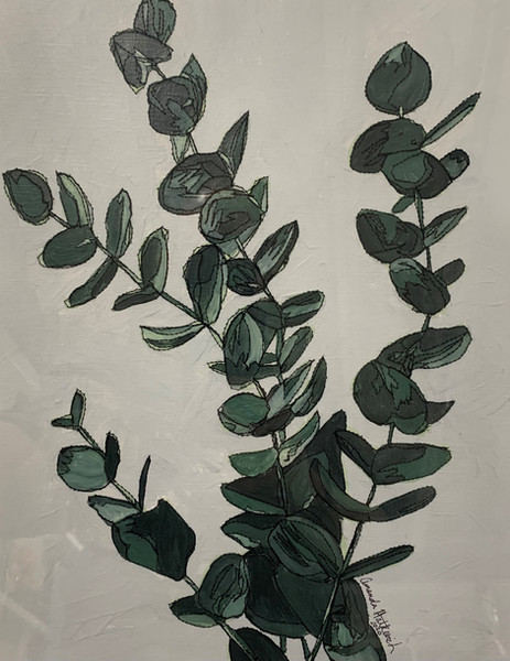 Hatkevich Eucalyptus_pic.jpg