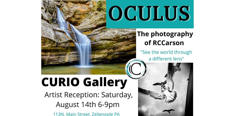 OCULUS: Artist Reception