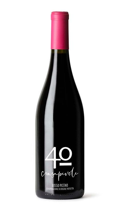 40_CONSAPEVOLE Rosso Piceno DOP  (Piceno Red DOP)