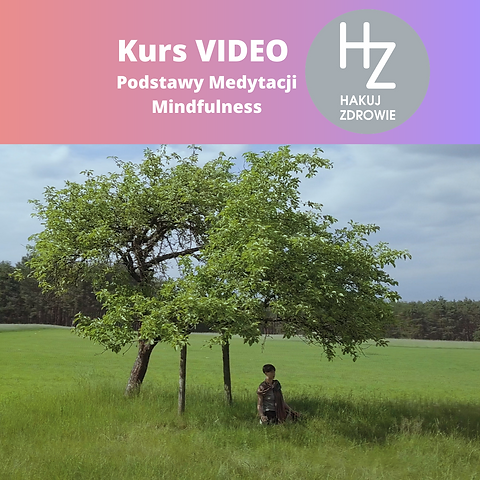 Kurs Video INsta cover.png