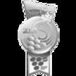 Medalha de Prata SELEZIONE DEL SINDACO 2012