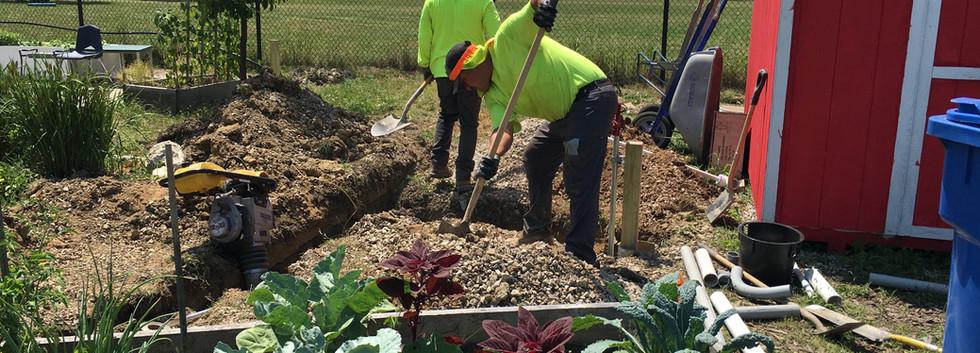 Irrigation upgrade 7.jpg