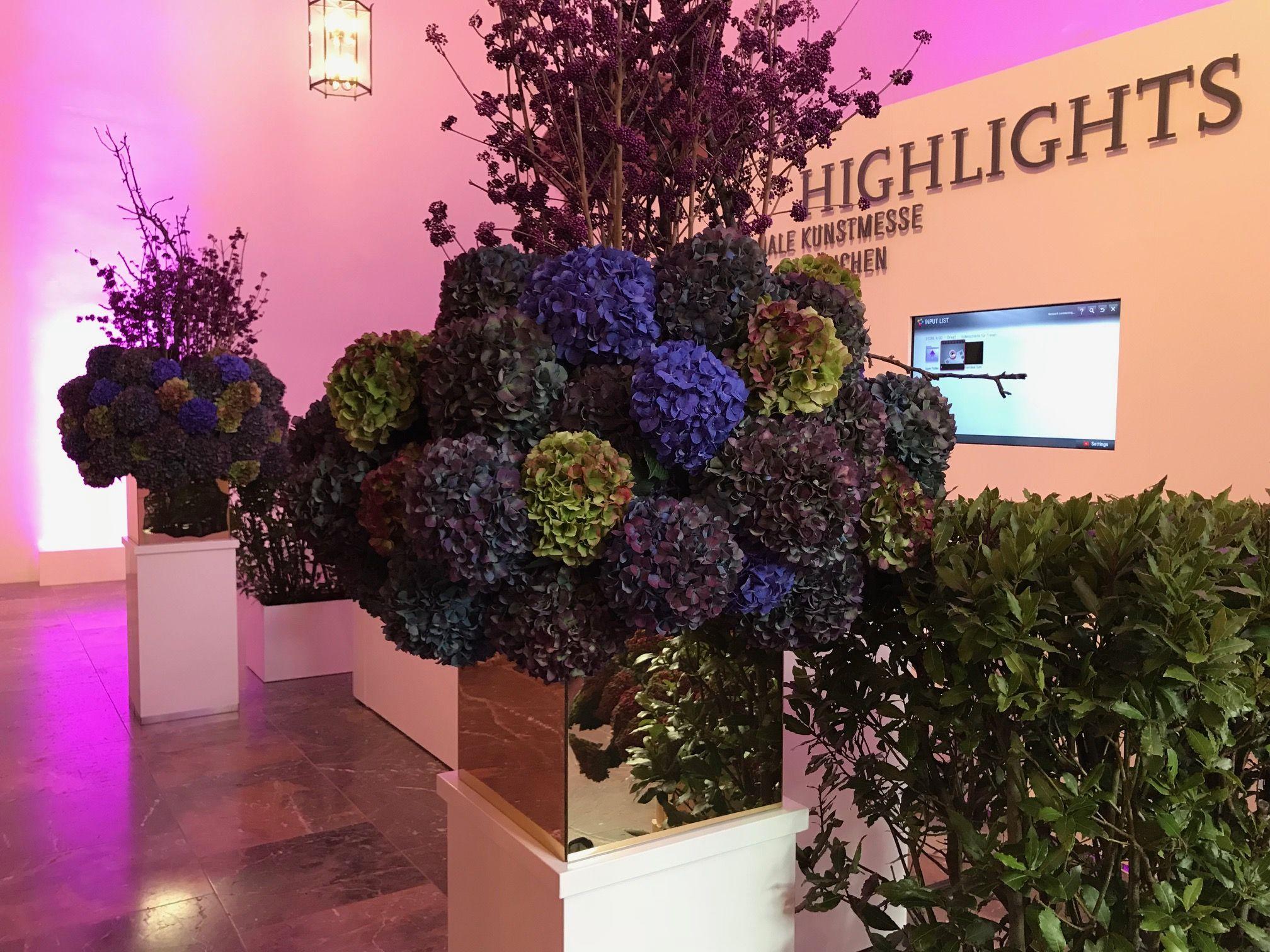 Blumen Bahlmann bahlmannflowers Hortensien Highlights