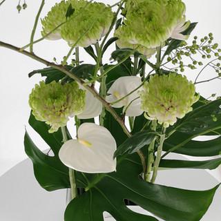 Blumen_Bahlmann_Blumenabo_weiß1.jpg
