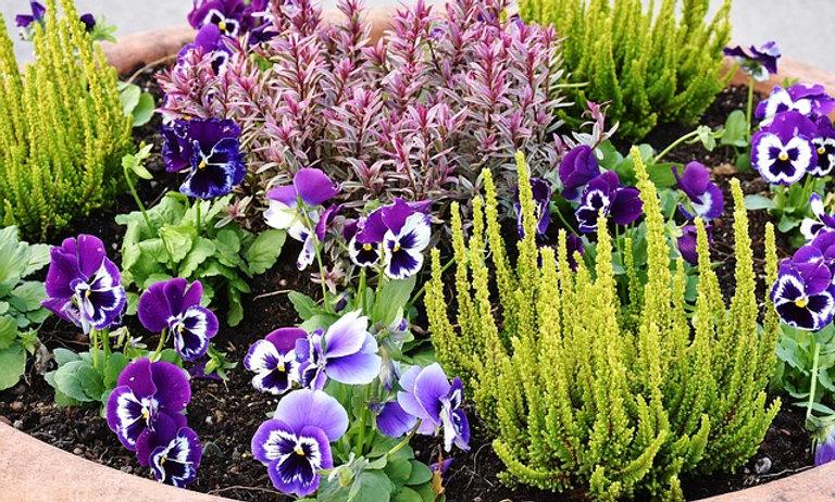 Flower & bush beds installed