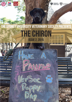 The Chiron Issue 2 2015
