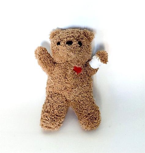 Teddy hurt