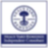 independent-consultant-logo (3).jpg