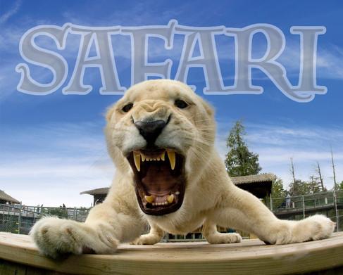 Parc Safari / Tous droits réservés © Copyright L1Visuel Graphomax
