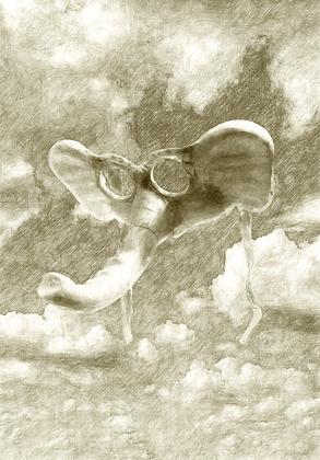 """Dumbo"" Print"