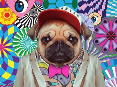 We Love Dogs at Misha's Studio