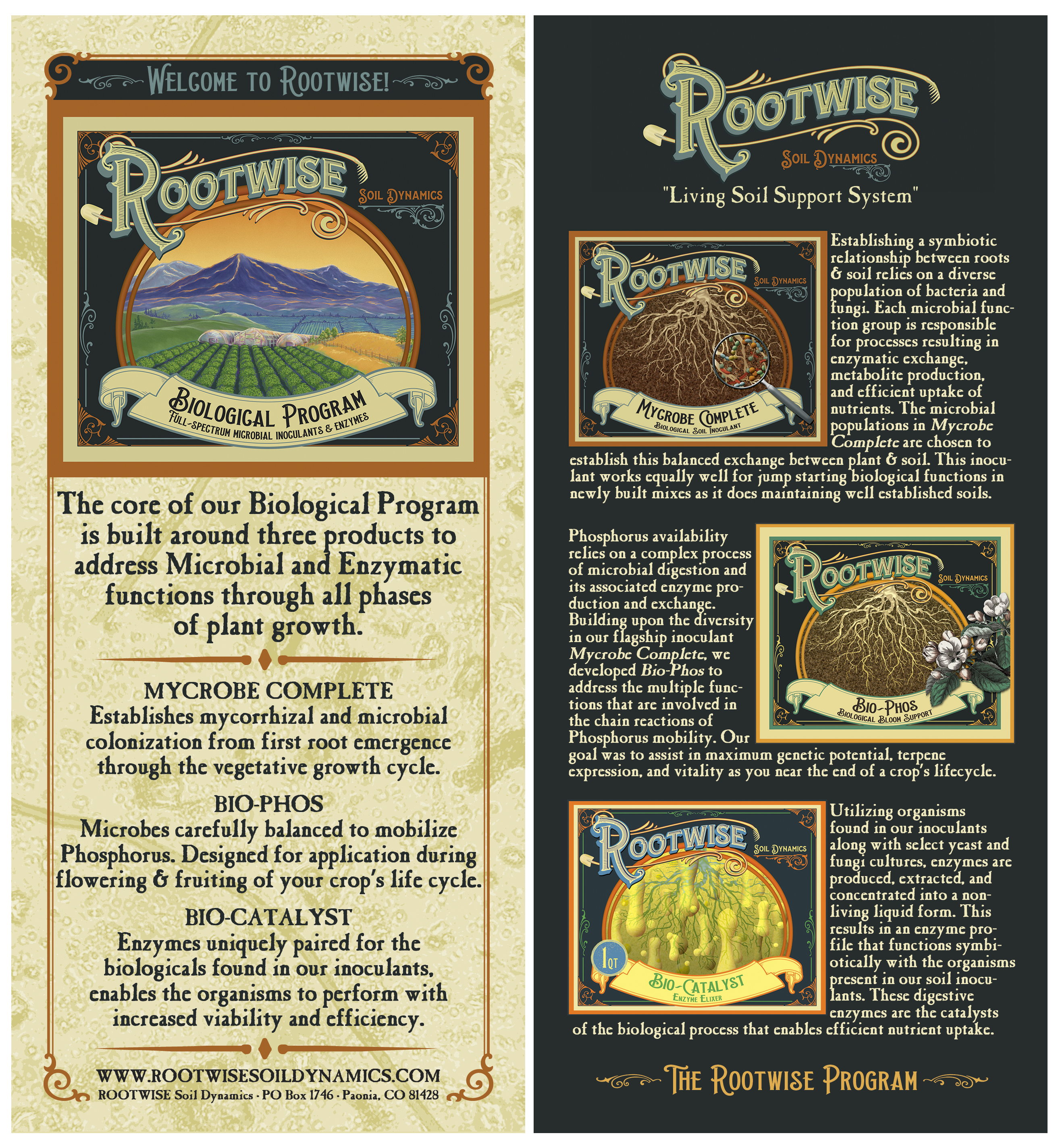 ROOTWISE Front-Back Brochure