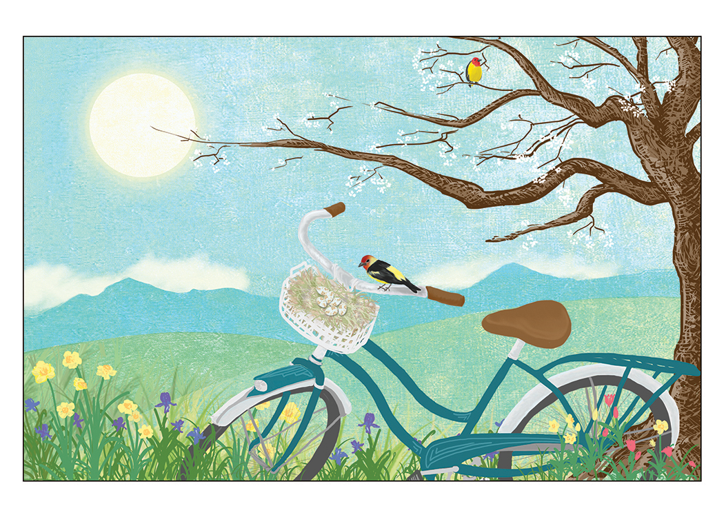 Spring-New Cycle