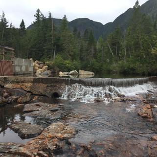 Beaver Falls Creek Diversion Dam