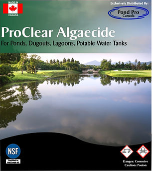 ProClear NSF Certified Algaecide, equivalent to Polydex & PolyPro