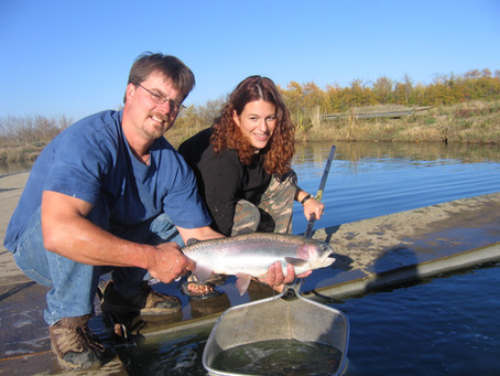 Fish Stocking- What You Need to Know!