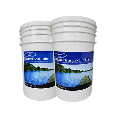 Pond and lake Bacteria treatment for clear healthy ponds
