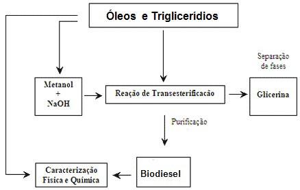 esquema produçao biodiesel