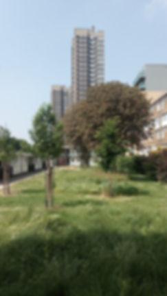 Cable Garden Long Vista.jpg