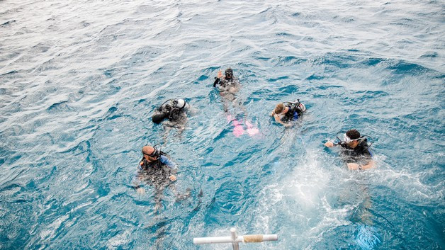 Scuba divers in the water.jpg