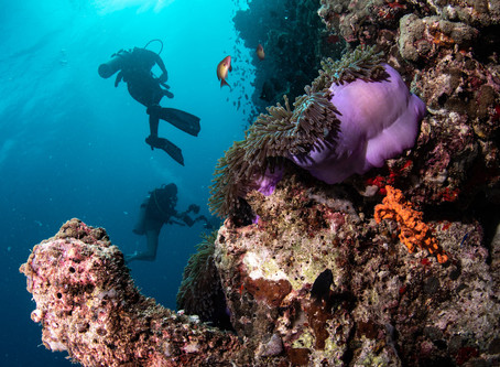 How to get out of a current while scuba diving?