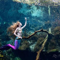 Mermaid Sara1.jpg