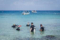 Shore diving in Cozumel.jpg