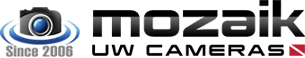 logo Mozaik.png