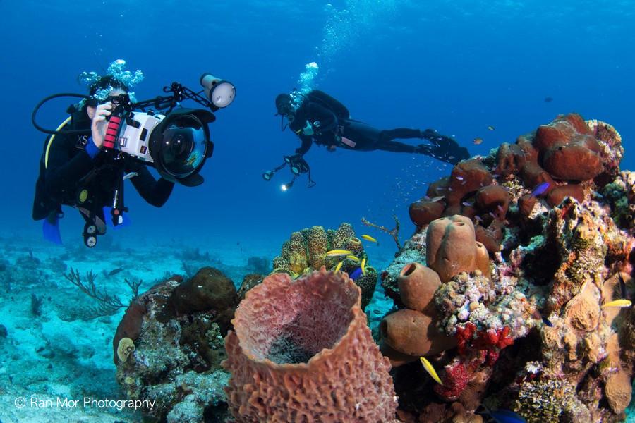 underwater photographers Cozumel.jpg