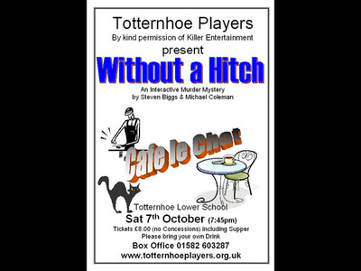 Without a Hitch poster v2.JPG