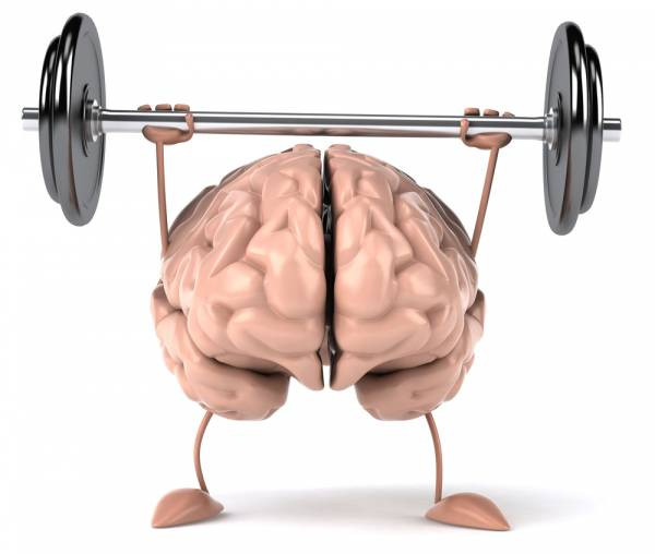 Stronger muscles and stronger brains